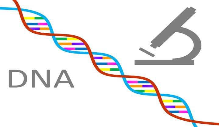 BIOLOŠKI fakultet Univerziteta u Beogradu od sledeće školske godine uvodi bioinformatiku !!!