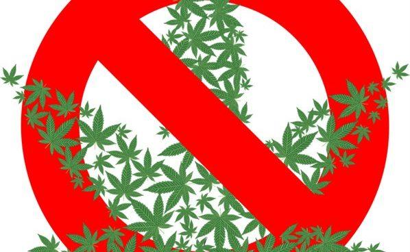 Uhapšen muškarac zbog posedovanja i šverca marihuane!!!