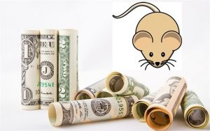 MALO SE PREJEO-Pacov pojeo 19.000 dolara u bankomatu !!!
