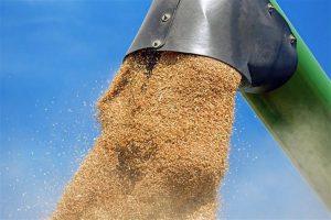 Ministarstvo poljoprivrede treba da hitno proveri otkup žita od poljoprivrednih proizvođača u Srbiji!!!