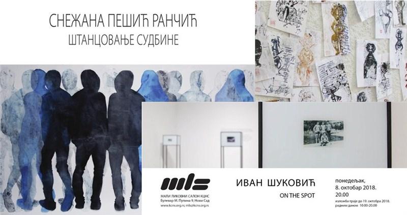 TRI izložbe u Novom Sadu !!!