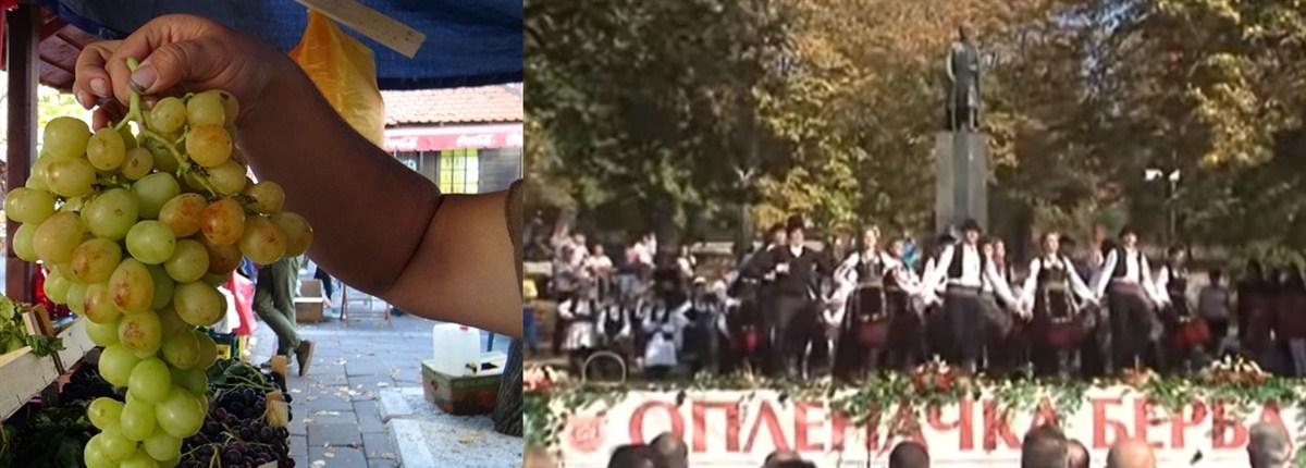 KONCERTOM Saše Matić završena je najveća privredno turistička manifestacija u Srbiji 55. OPLENAČKA BERBA !!!