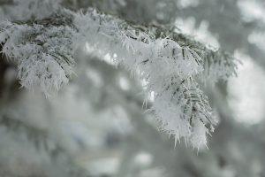 LEDENI TALAS HARA SRBIJOM-Da li će nam u domovima biti hladno ?