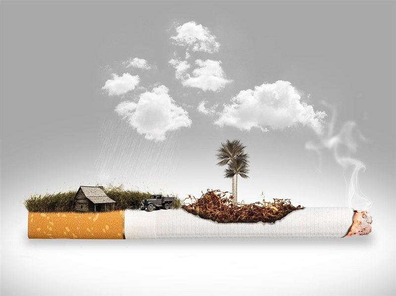 Svetska zdravstvena organizacija upozorava da i dalje mnogo ljudi umire zbog posledica izazvanih upotrebom duvanskih proizvoda!!!
