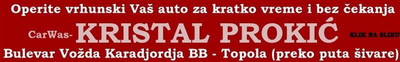 prokic 221-(800 x 125)