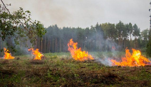 Odeljenje za vanredne situacije u Požarevcu apeluje na građane da ne spaljuju nisko rastinje na otvorenom !!!