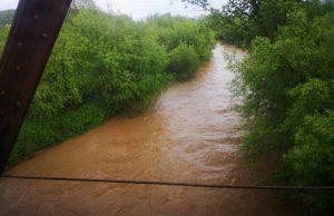 ČAČAK – Posle jučerašnje i noćašnje kiše vodostaji reka prvog i drugog reda, koje protiču kroz Čačak, bili su u blagom porastu, ali opasnosti od njihovog izlivanja nije bilo.