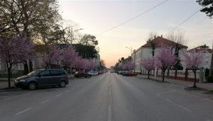 Na sednici Štaba za vanredne situacije opštine Svilajnac donete su sledeće naredbe
