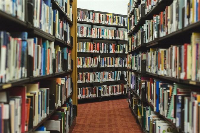 """Milorad Milinković gost u biblioteci """"Radoje Domanović"""" u Topoli !!!"""