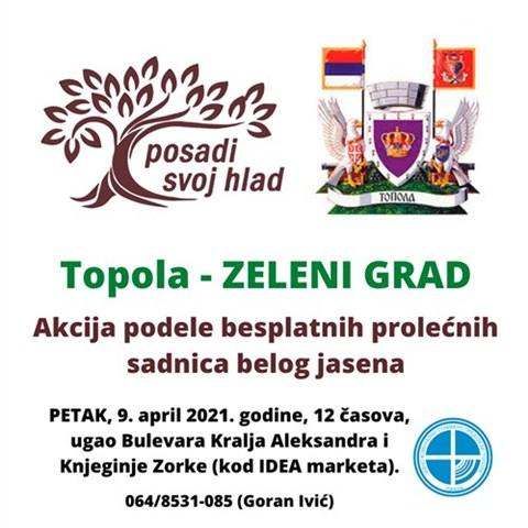 PODELA BESPLATNIH SADNICA BELOG JASENA GRADJANIMA TOPOLE-1.)