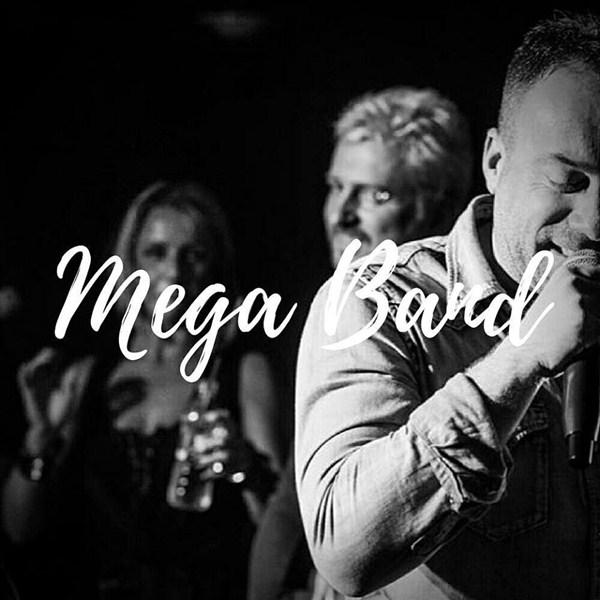 Mega Band2_n